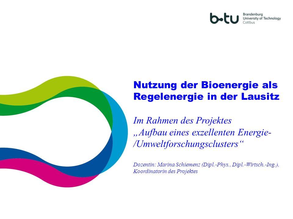 Nutzung der Bioenergie als Regelenergie in der Lausitz