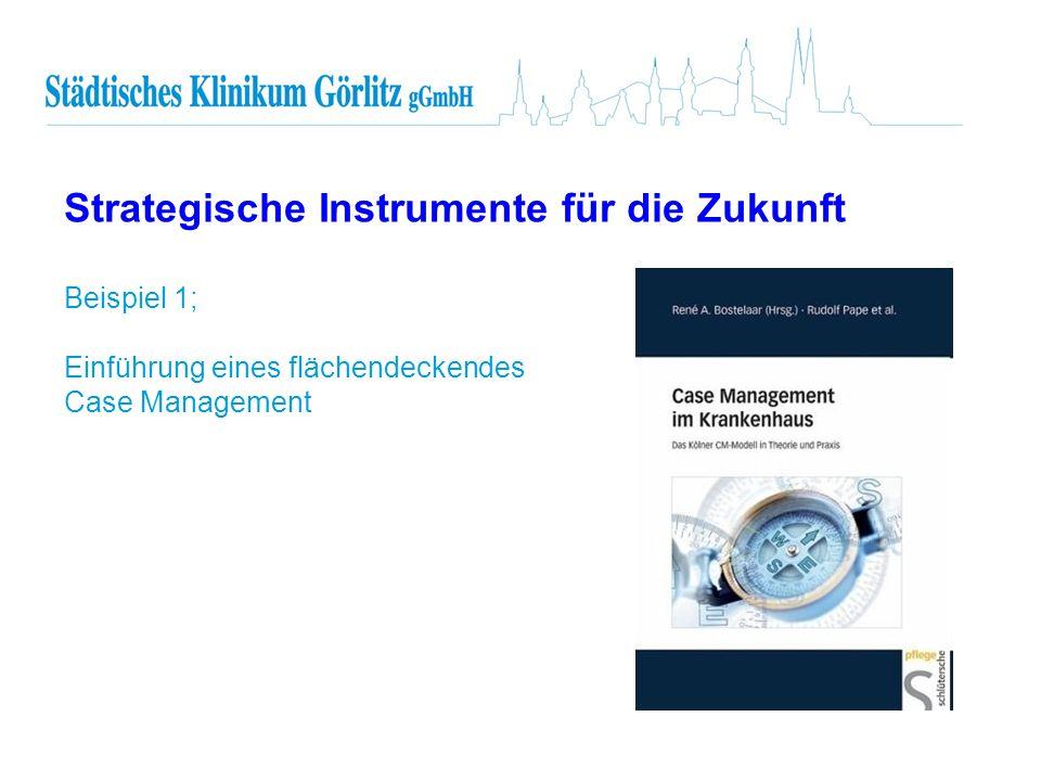 Strategische Instrumente für die Zukunft Beispiel 1; Einführung eines flächendeckendes Case Management