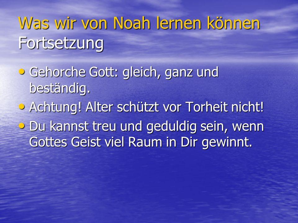 Was wir von Noah lernen können Fortsetzung