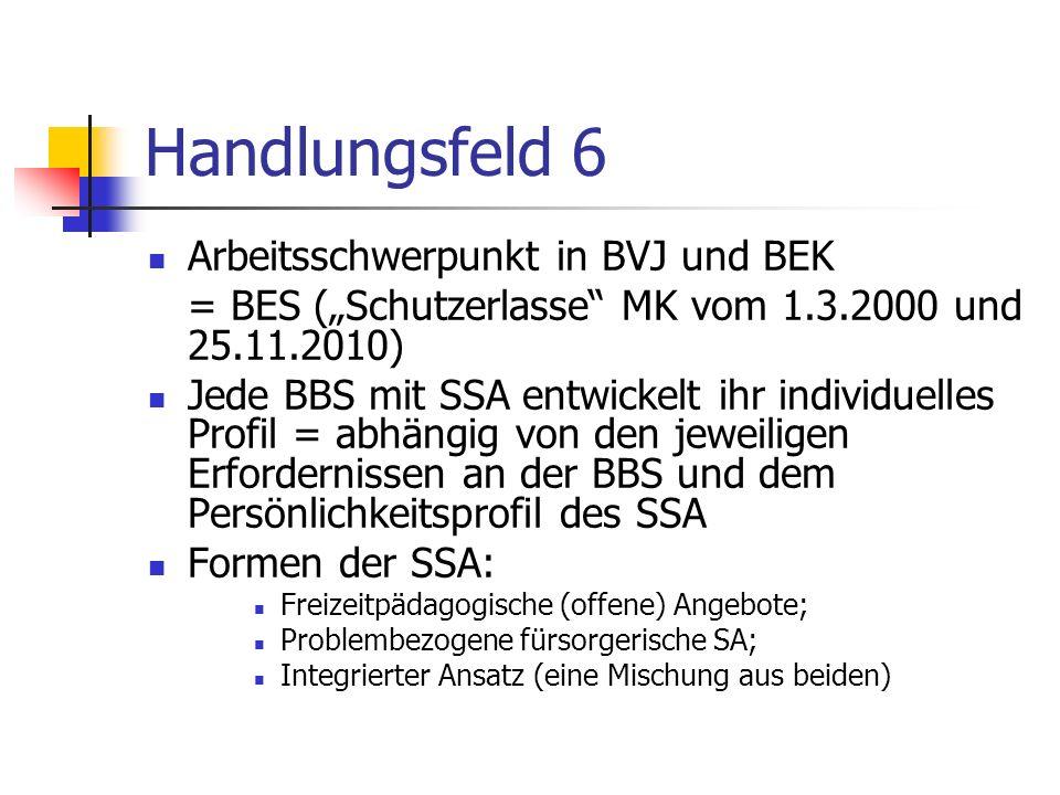 Handlungsfeld 6 Arbeitsschwerpunkt in BVJ und BEK