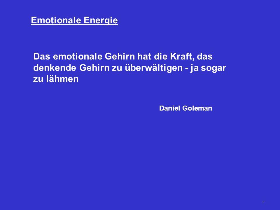 Emotionale Energie Das emotionale Gehirn hat die Kraft, das denkende Gehirn zu überwältigen - ja sogar zu lähmen.