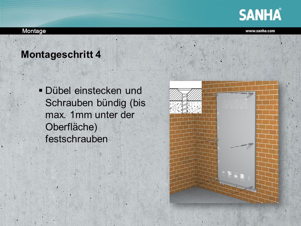 Montage Montageschritt 4. Dübel einstecken und Schrauben bündig (bis max.