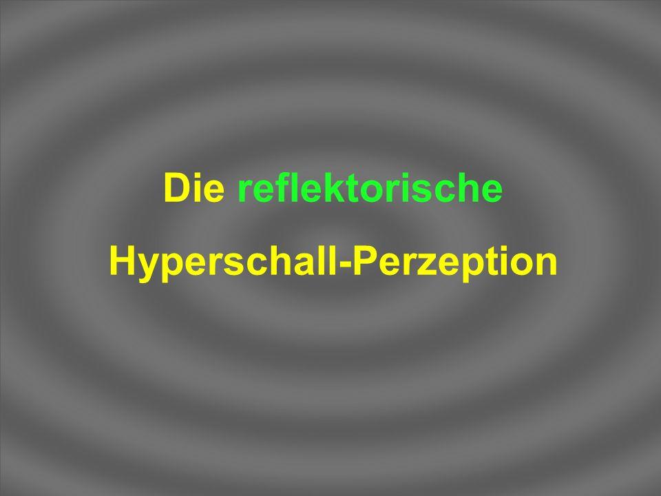 Hyperschall-Perzeption