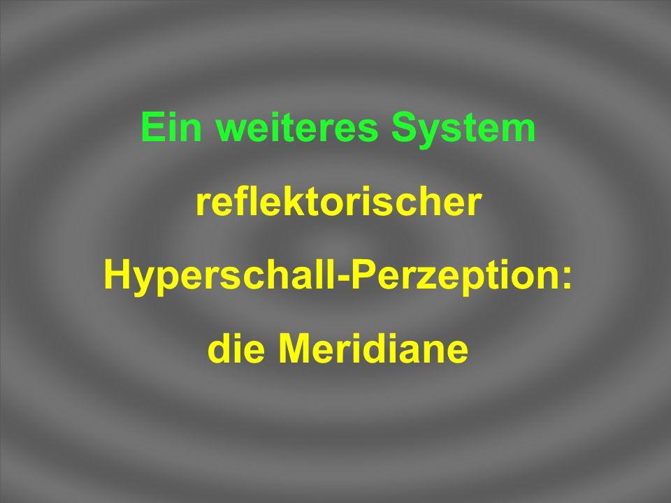 Ein weiteres System reflektorischer Hyperschall-Perzeption: