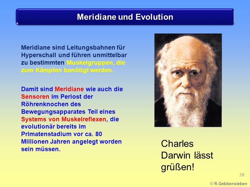Meridiane und Evolution
