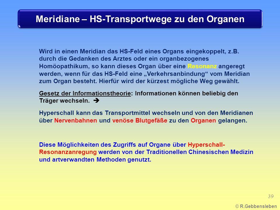 Meridiane – HS-Transportwege zu den Organen