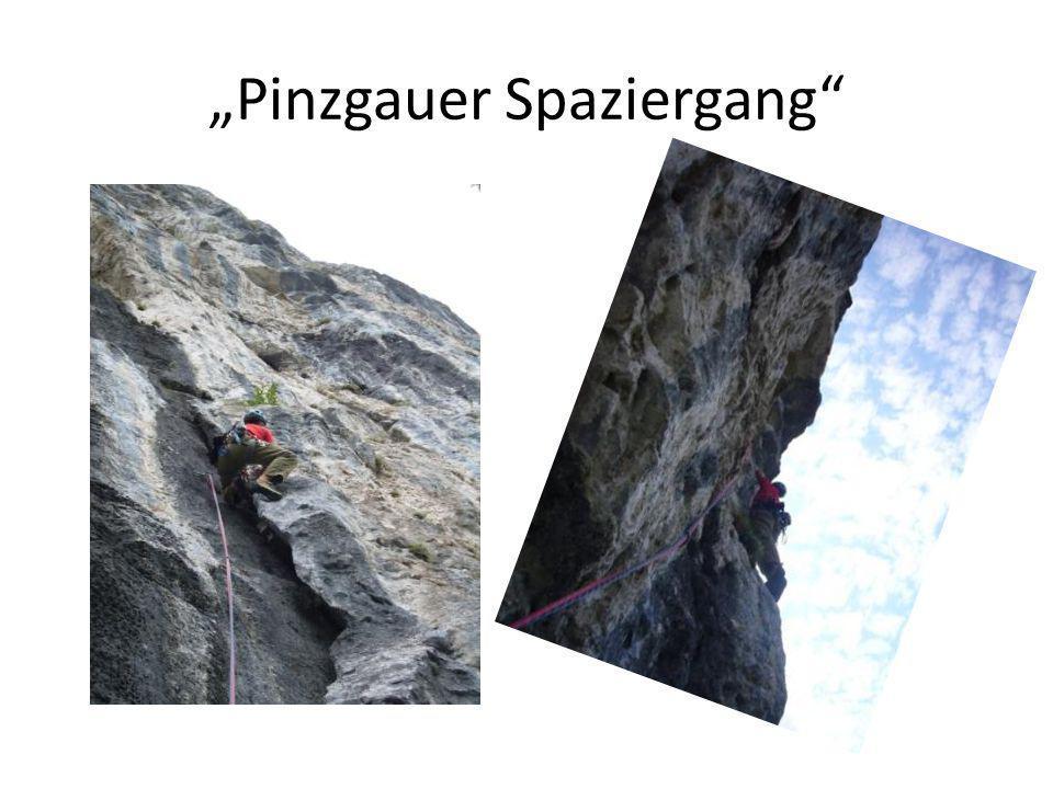 """""""Pinzgauer Spaziergang"""