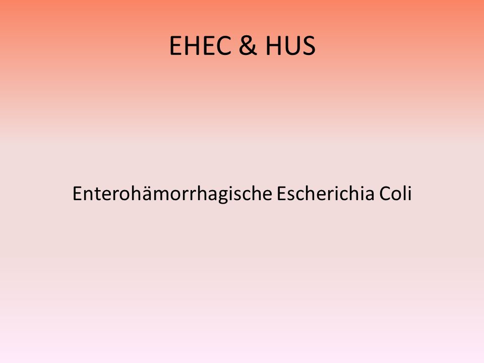 Enterohämorrhagische Escherichia Coli