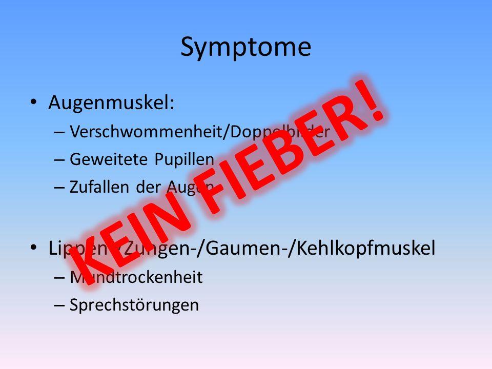 KEIN FIEBER! Symptome Augenmuskel: