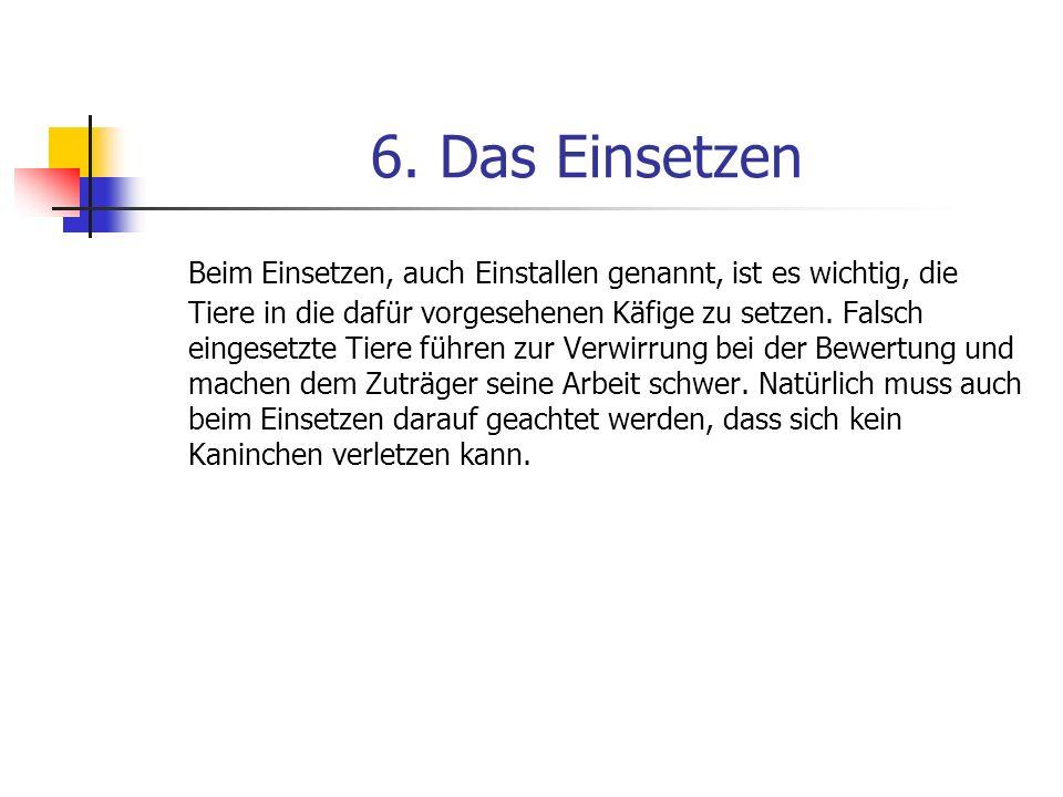 6. Das Einsetzen
