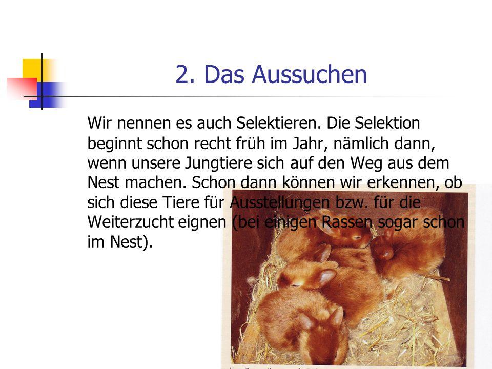 2. Das Aussuchen