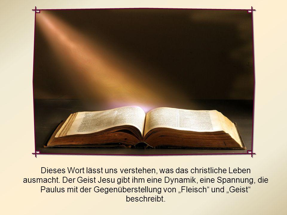 Dieses Wort lässt uns verstehen, was das christliche Leben ausmacht