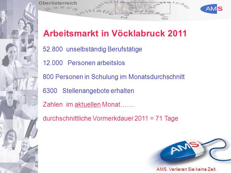 Arbeitsmarkt in Vöcklabruck 2011