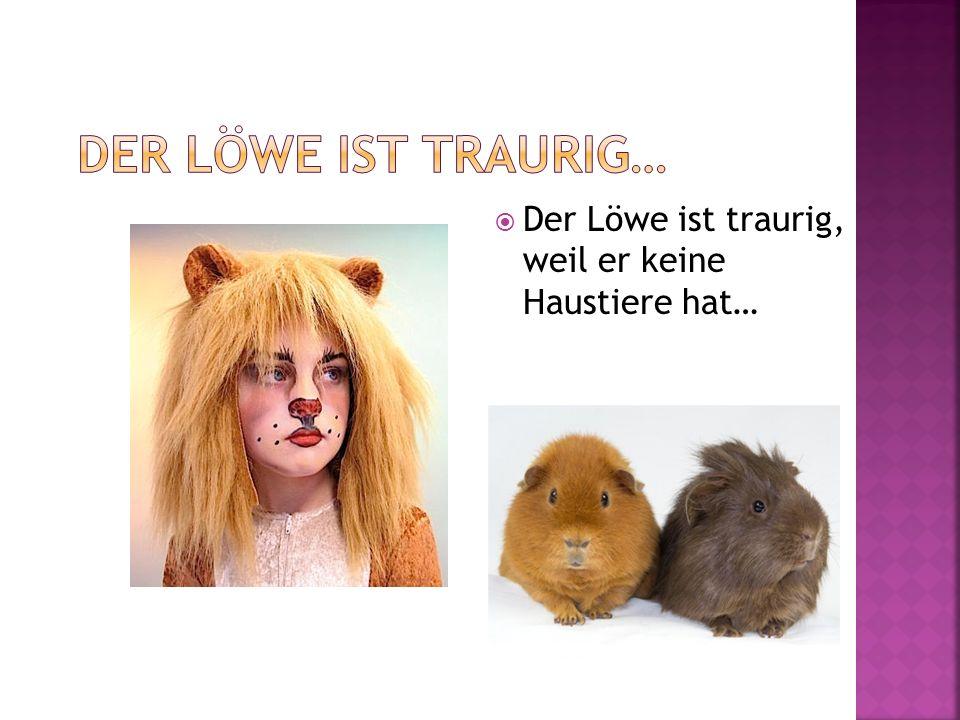 Der Löwe ist traurig… Der Löwe ist traurig, weil er keine Haustiere hat…