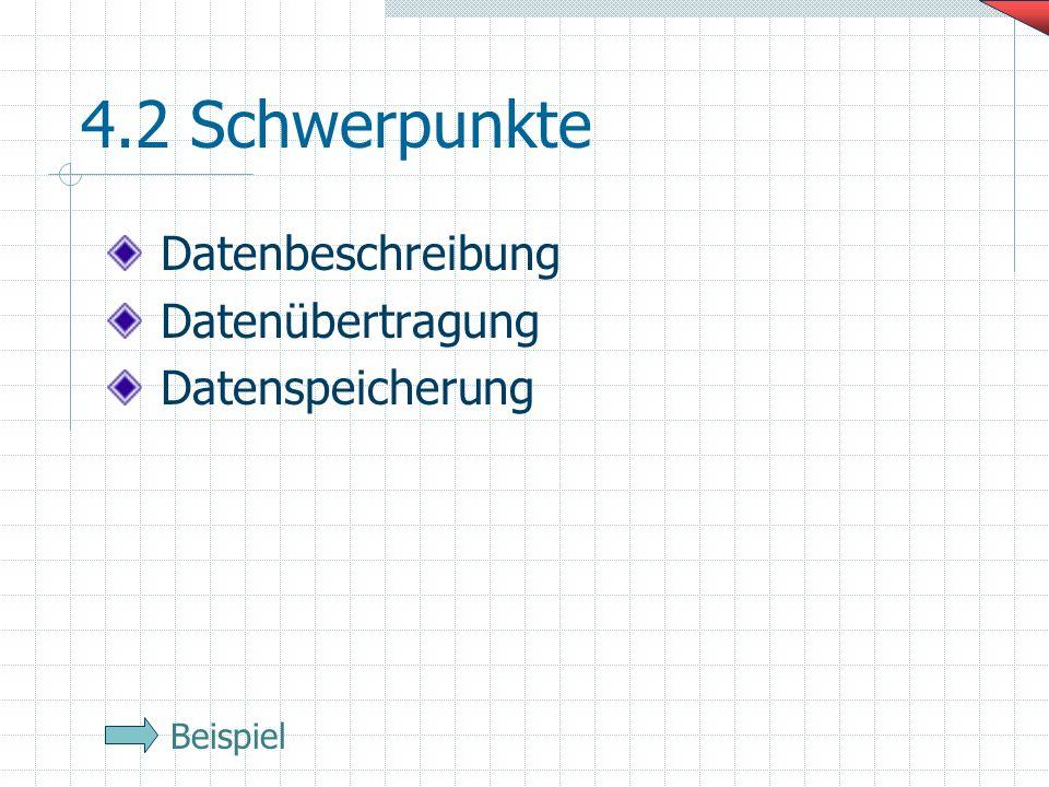 4.2 Schwerpunkte Datenbeschreibung Datenübertragung Datenspeicherung