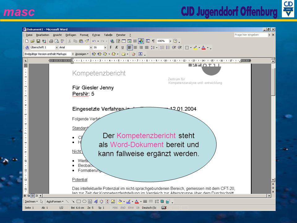 Der Kompetenzbericht steht als Word-Dokument bereit und