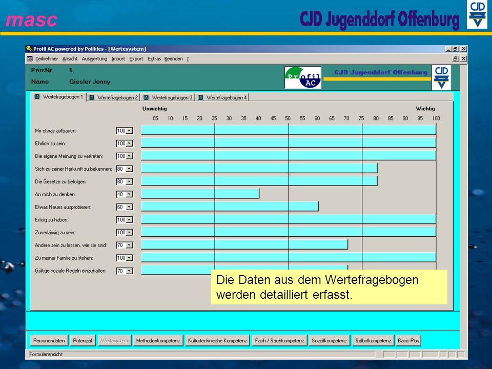 Die Daten aus dem Wertefragebogen werden detailliert erfasst.
