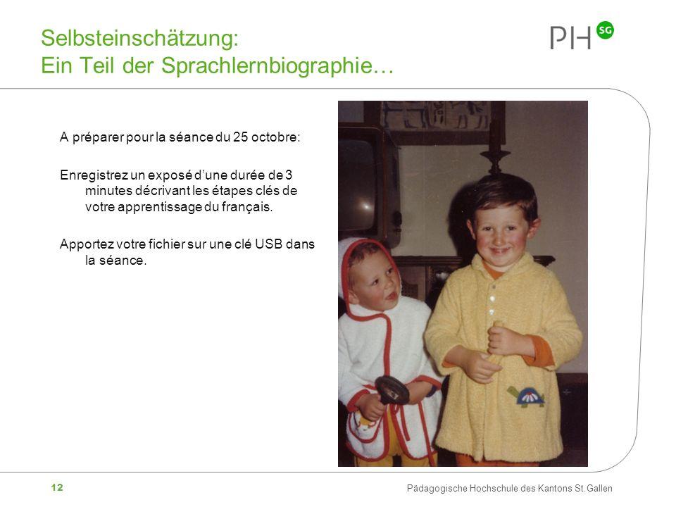 Selbsteinschätzung: Ein Teil der Sprachlernbiographie…