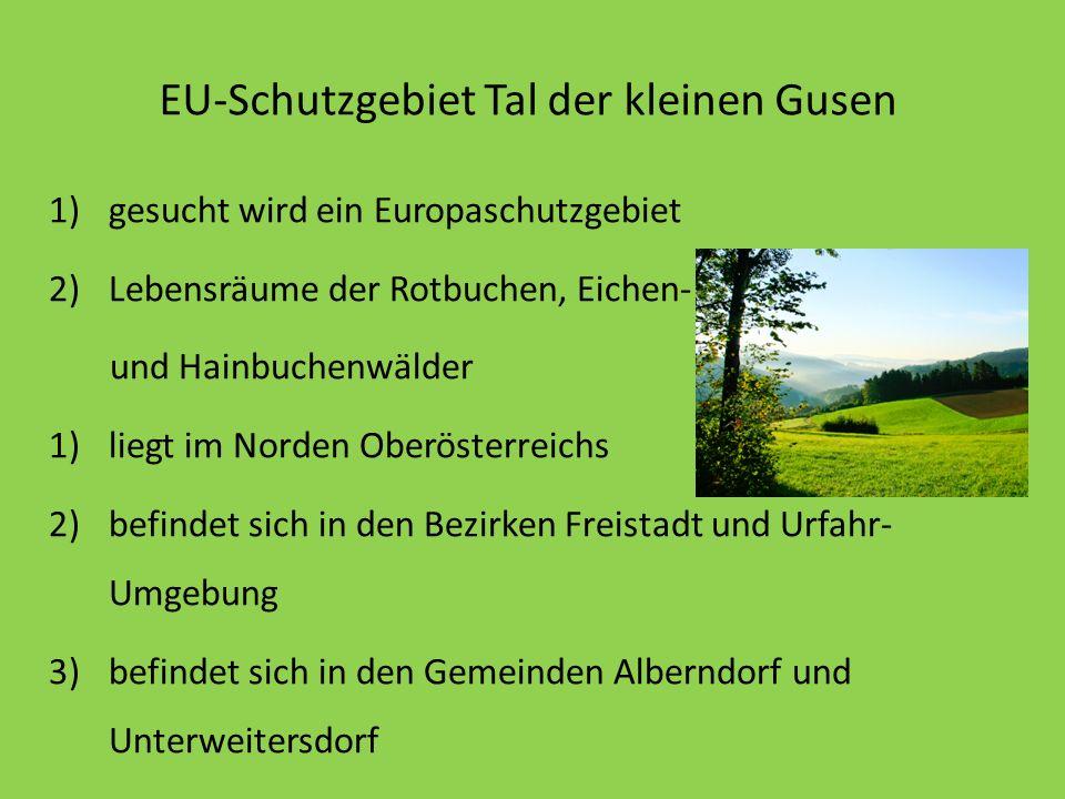EU-Schutzgebiet Tal der kleinen Gusen