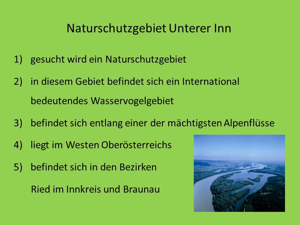 Naturschutzgebiet Unterer Inn
