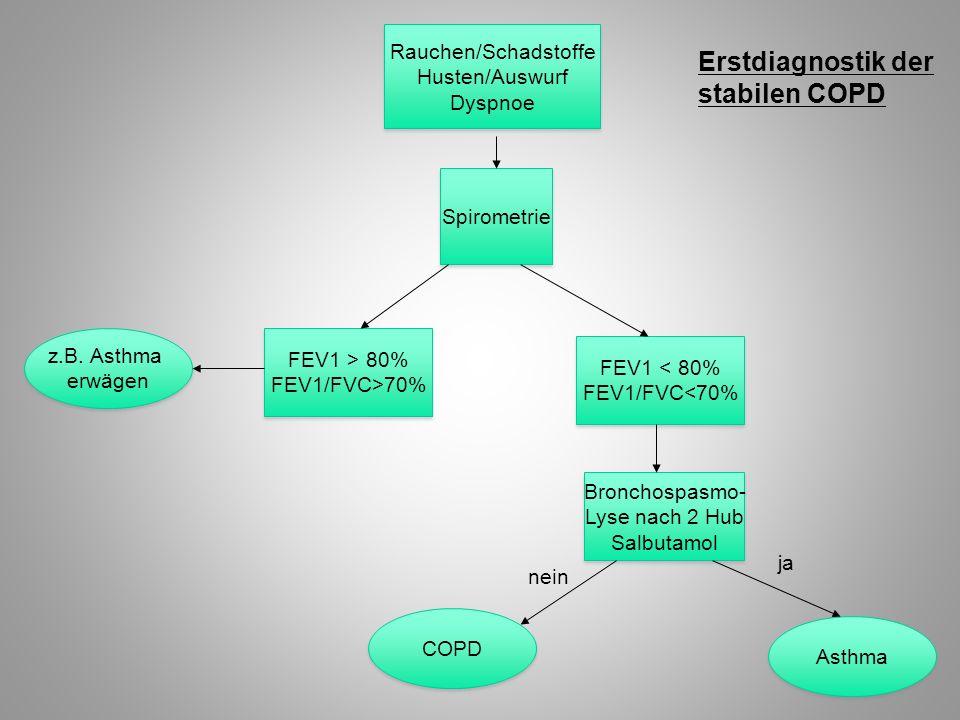 Erstdiagnostik der stabilen COPD Rauchen/Schadstoffe Husten/Auswurf