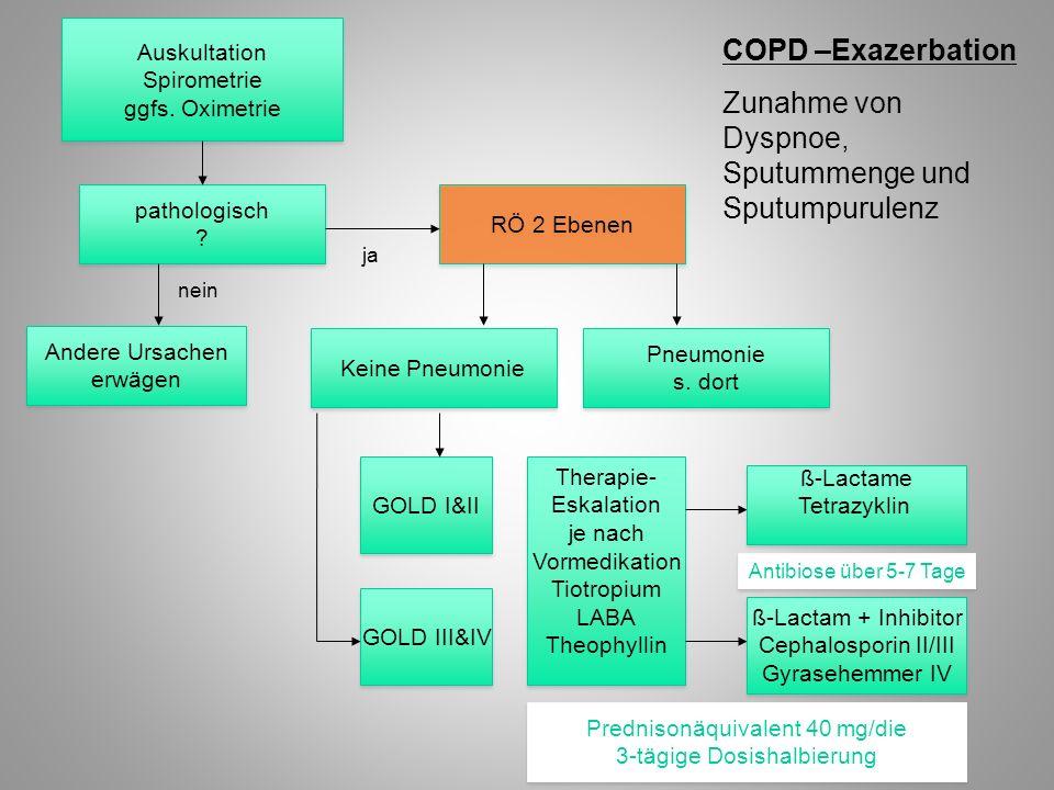 Zunahme von Dyspnoe, Sputummenge und Sputumpurulenz