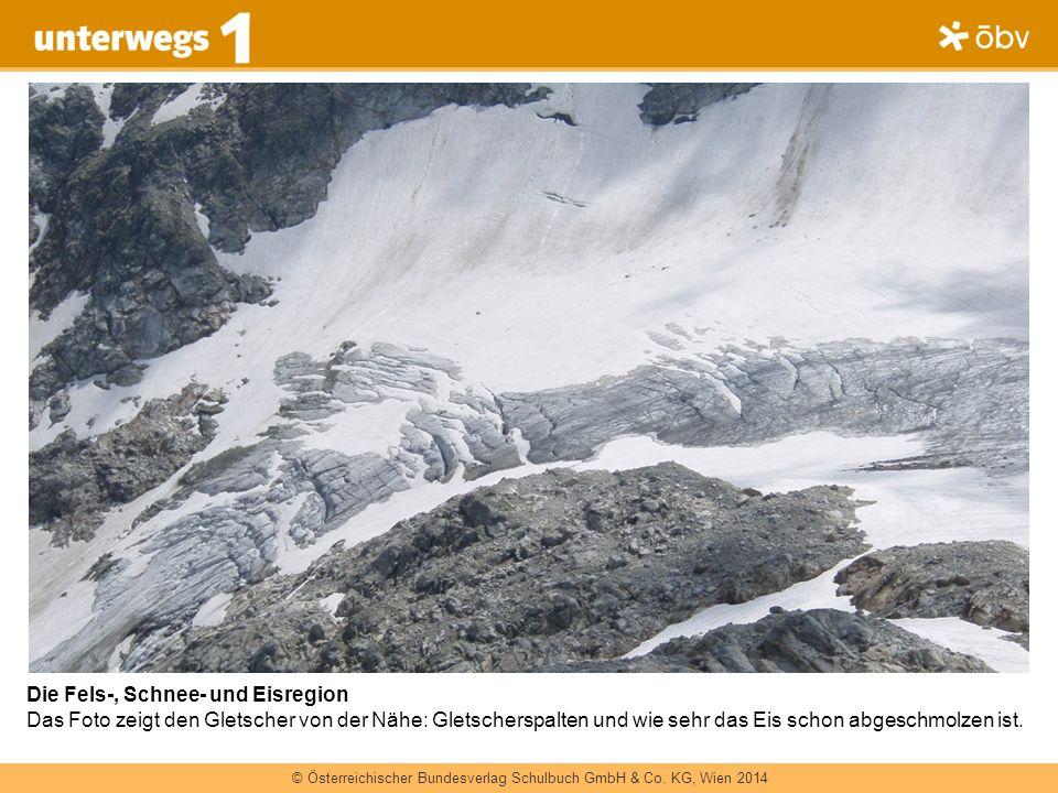 Die Fels-, Schnee- und Eisregion