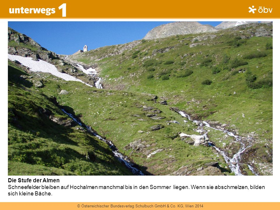 Die Stufe der Almen Schneefelder bleiben auf Hochalmen manchmal bis in den Sommer liegen.