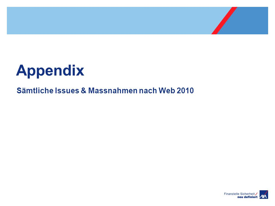 Appendix Sämtliche Issues & Massnahmen nach Web 2010