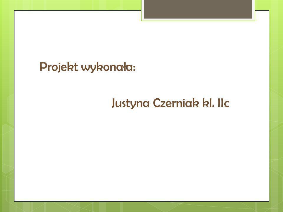 Projekt wykonała: Justyna Czerniak kl. IIc