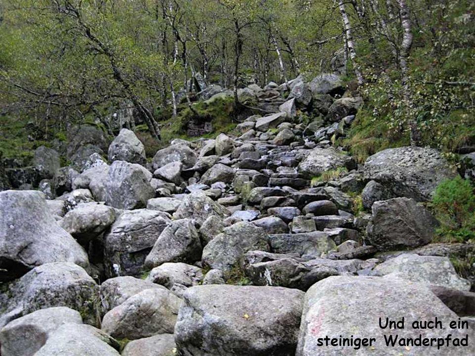 Und auch ein steiniger Wanderpfad