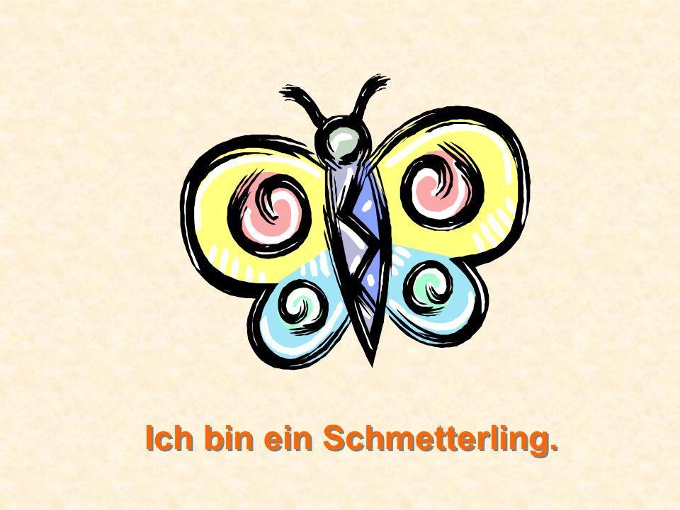 Ich bin ein Schmetterling.