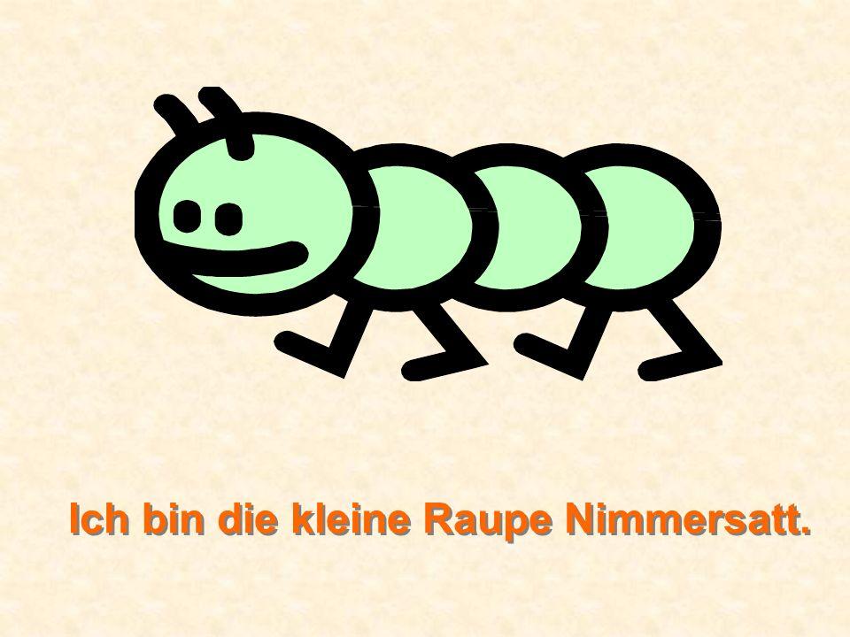 Ich bin die kleine Raupe Nimmersatt.