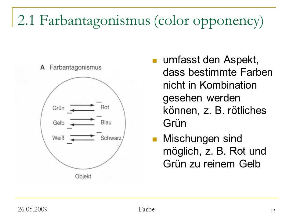 2.1 Farbantagonismus (color opponency)
