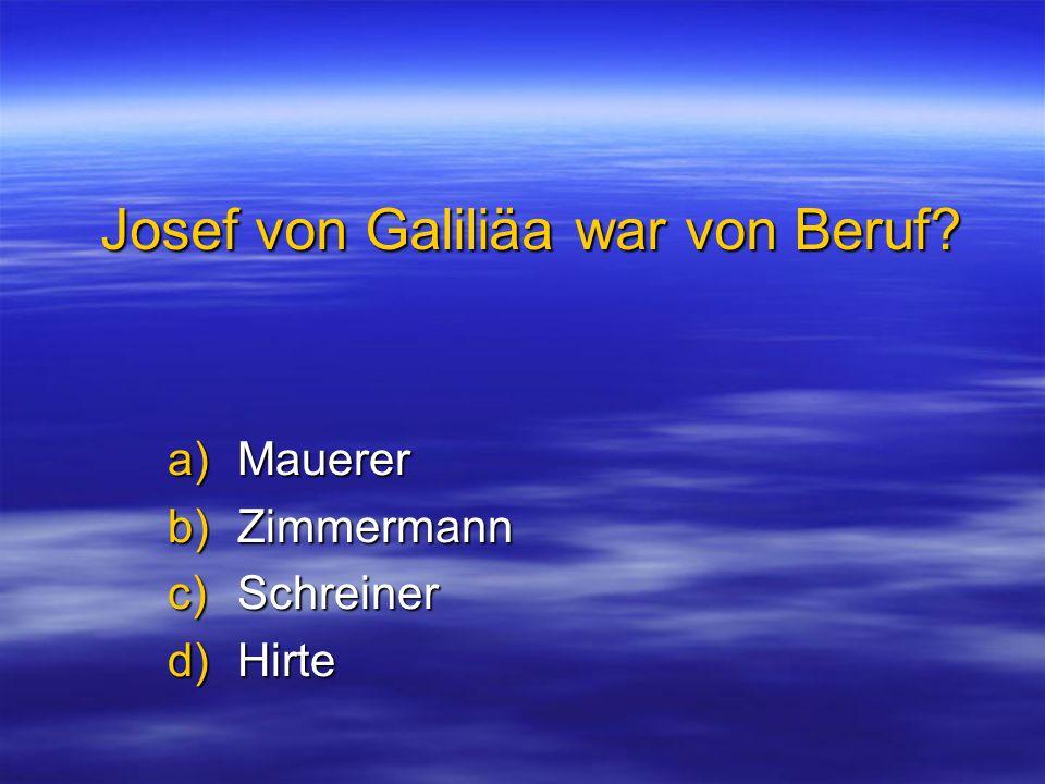 Josef von Galiliäa war von Beruf