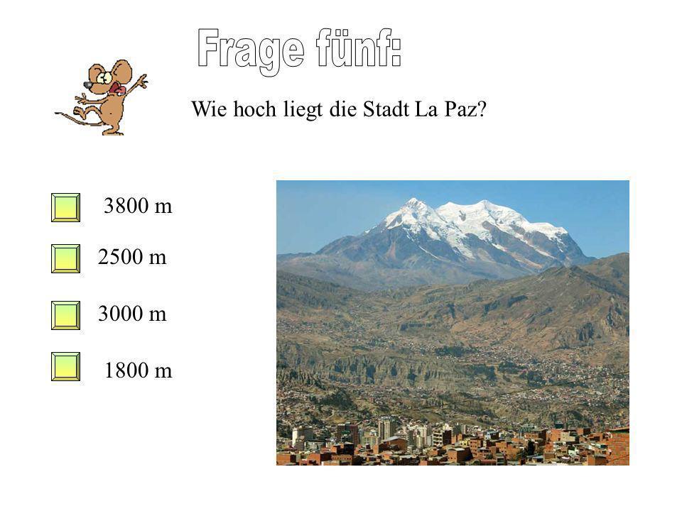 Frage fünf: Wie hoch liegt die Stadt La Paz 3800 m 2500 m 3000 m