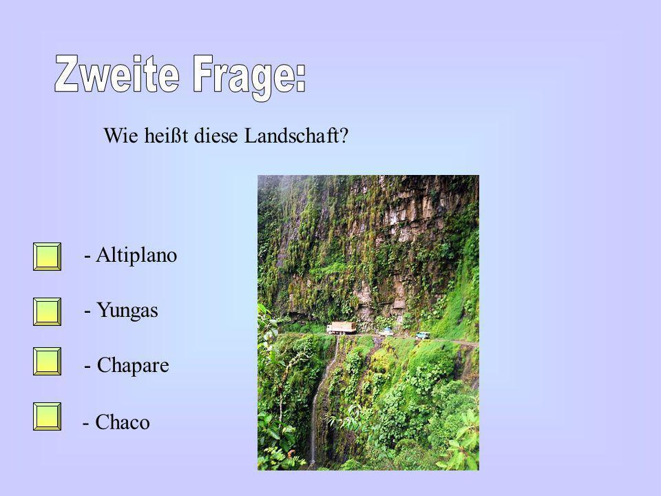Zweite Frage: Wie heißt diese Landschaft Altiplano Yungas Chapare