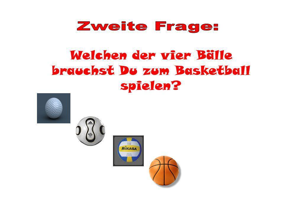 Welchen der vier Bälle brauchst Du zum Basketball spielen