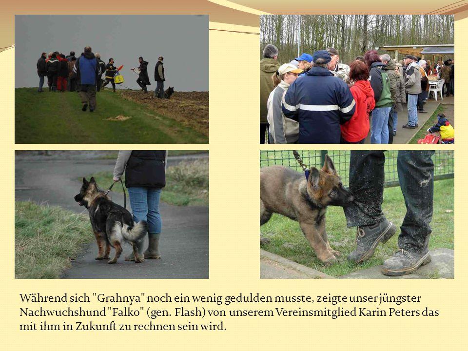 Während sich Grahnya noch ein wenig gedulden musste, zeigte unser jüngster Nachwuchshund Falko (gen.