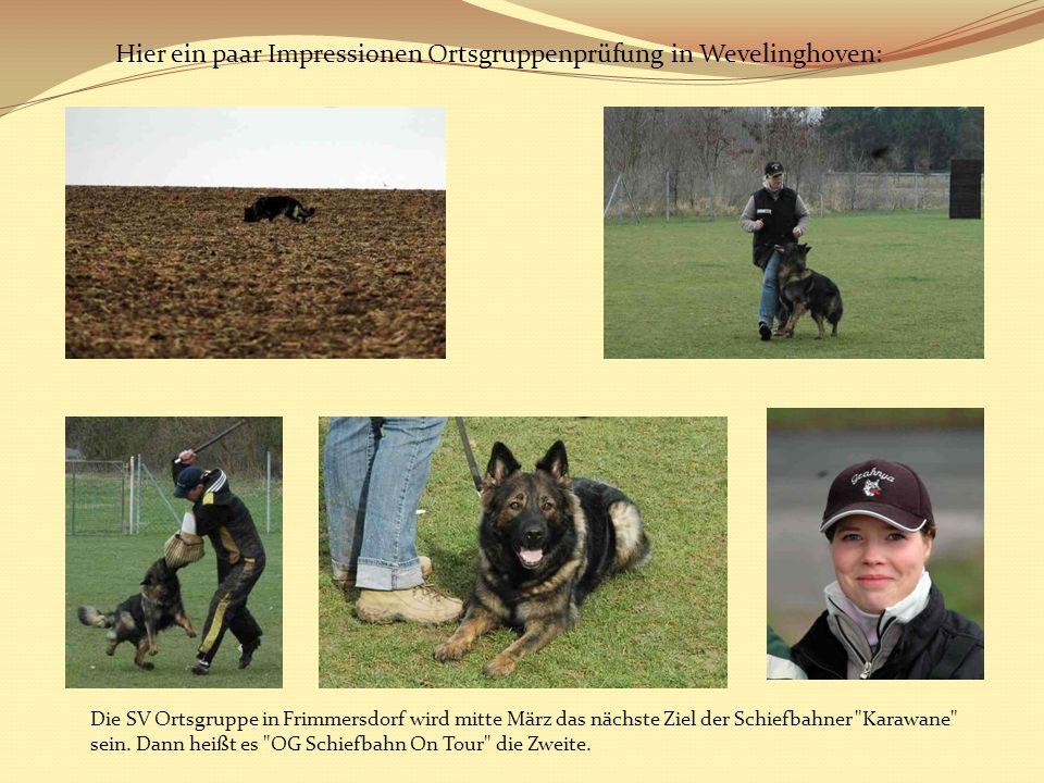 Hier ein paar Impressionen Ortsgruppenprüfung in Wevelinghoven: