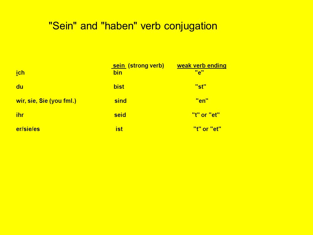 Sein and haben verb conjugation