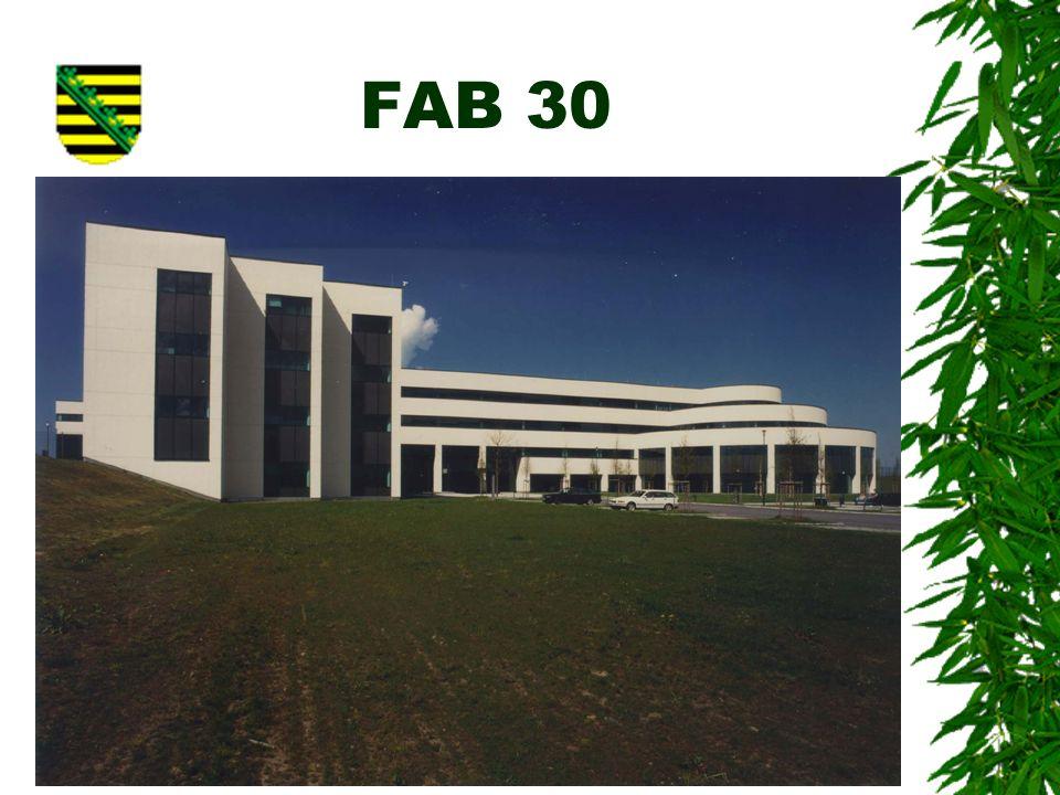 FAB 30