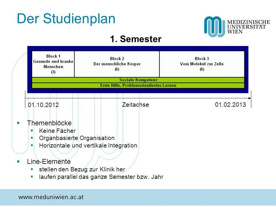 Der Studienplan 1. Semester Themenblöcke Line-Elemente Zeitachse