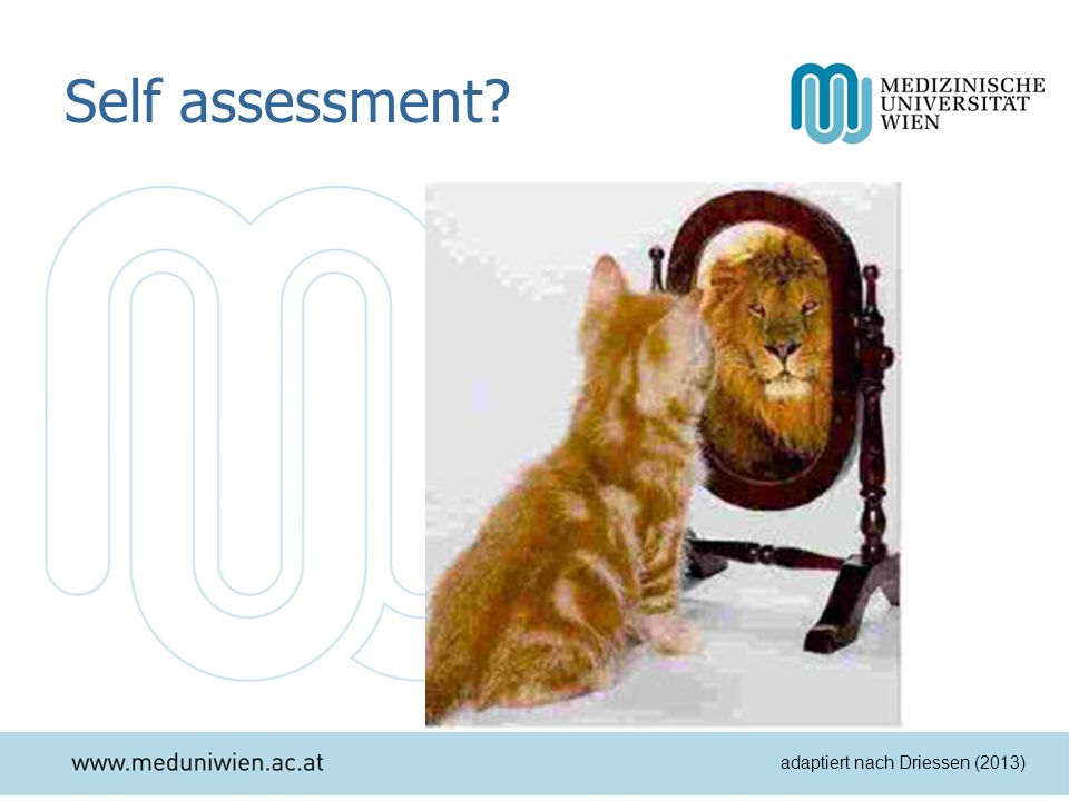 Self assessment adaptiert nach Driessen (2013)