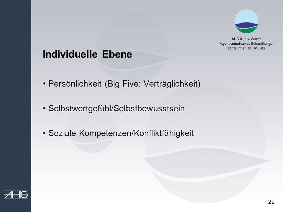 Individuelle Ebene Persönlichkeit (Big Five: Verträglichkeit)