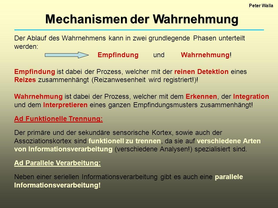 Mechanismen der Wahrnehmung