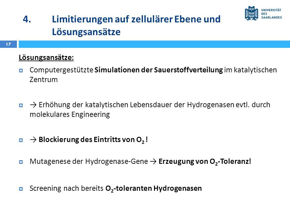 4. Limitierungen auf zellulärer Ebene und Lösungsansätze