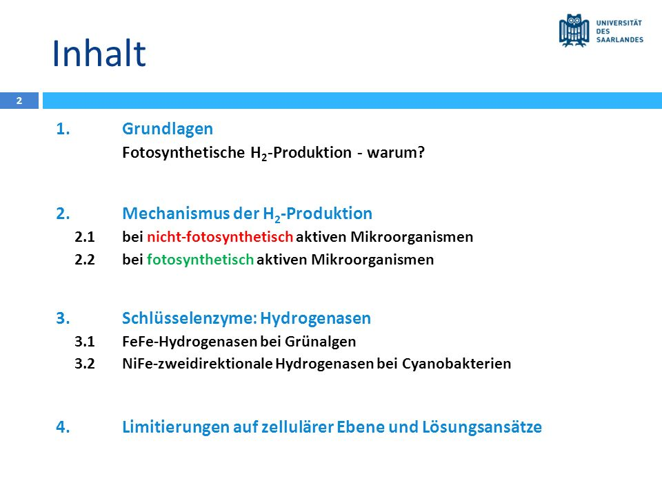 Inhalt 1. Grundlagen 2. Mechanismus der H2-Produktion