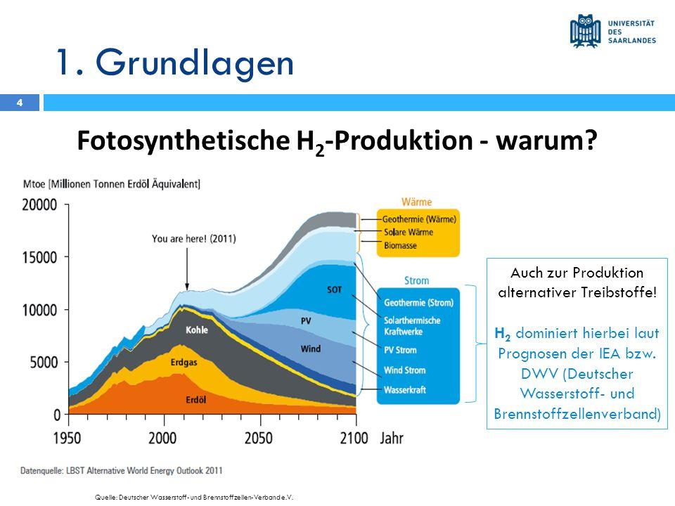Fotosynthetische H2-Produktion - warum