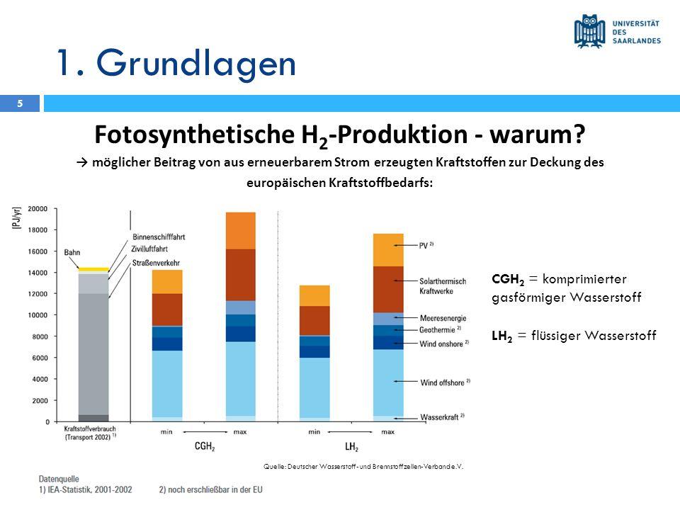 1. Grundlagen Fotosynthetische H2-Produktion - warum